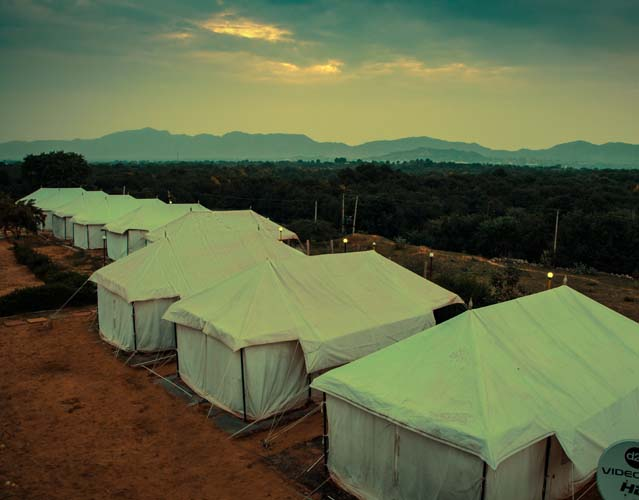Luxury Camp in Pushkar